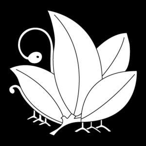 揚羽南天蝶