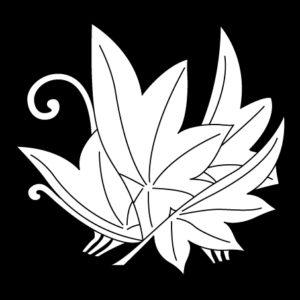 変り揚羽楓蝶